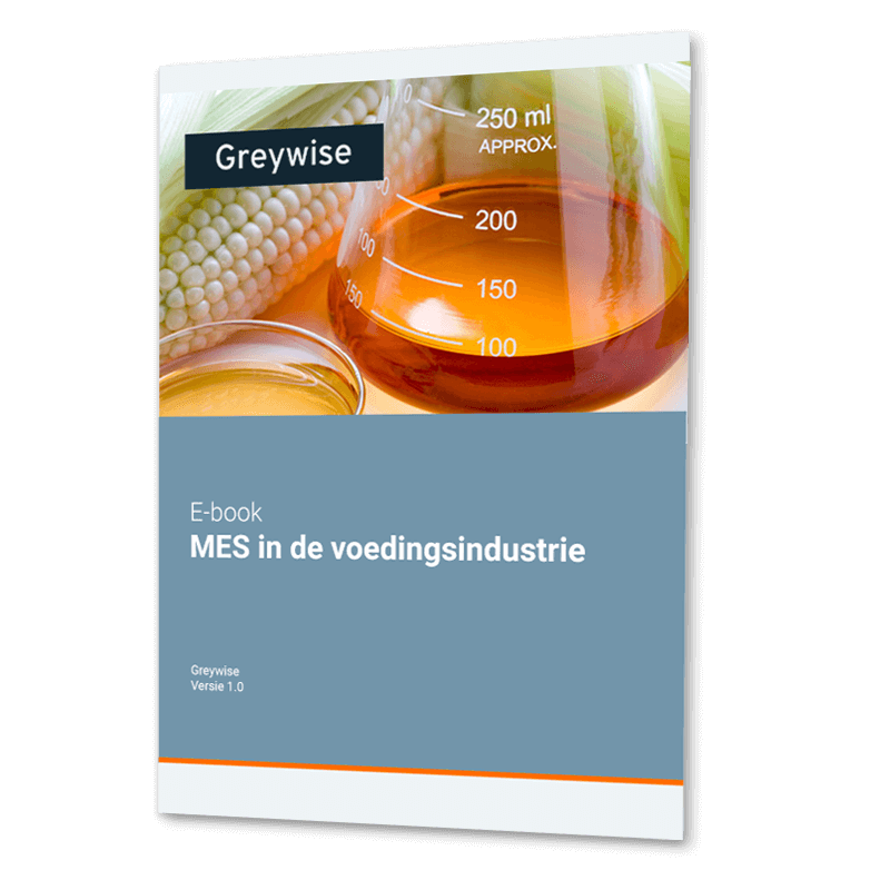 E-book Manufacturing execution system MES in Food